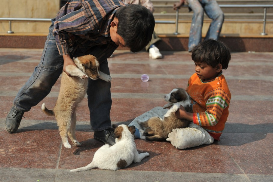 Homeless Indian children play with puppi